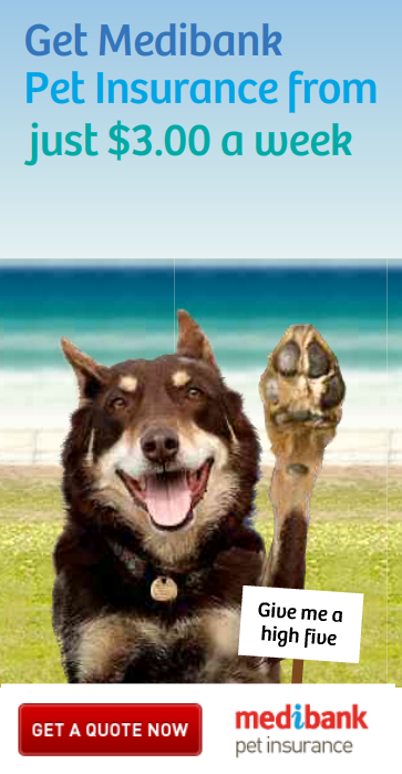medibank pet insurance   give rusty a high five