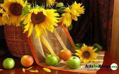 Girasoles y manzanas (Wallpaper de 1920x1200px)