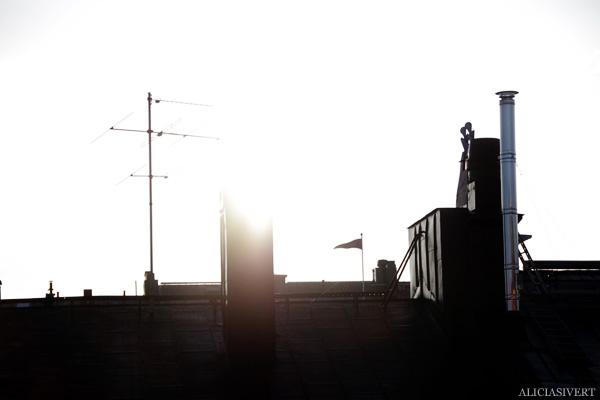 aliciasivert, alicia sivertsson, gryning, dawn, soluppgång