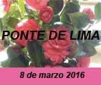 P_Lima_imag