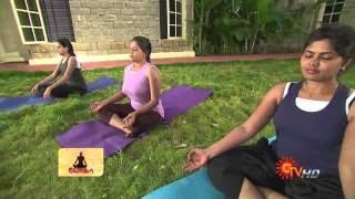 Sun TV Yoga 11-11-13