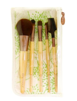 Eco Tools, Eco Tools 5 Piece Bamboo Makeup Brush Set, makeup brush, makeup brushes, eye makeup