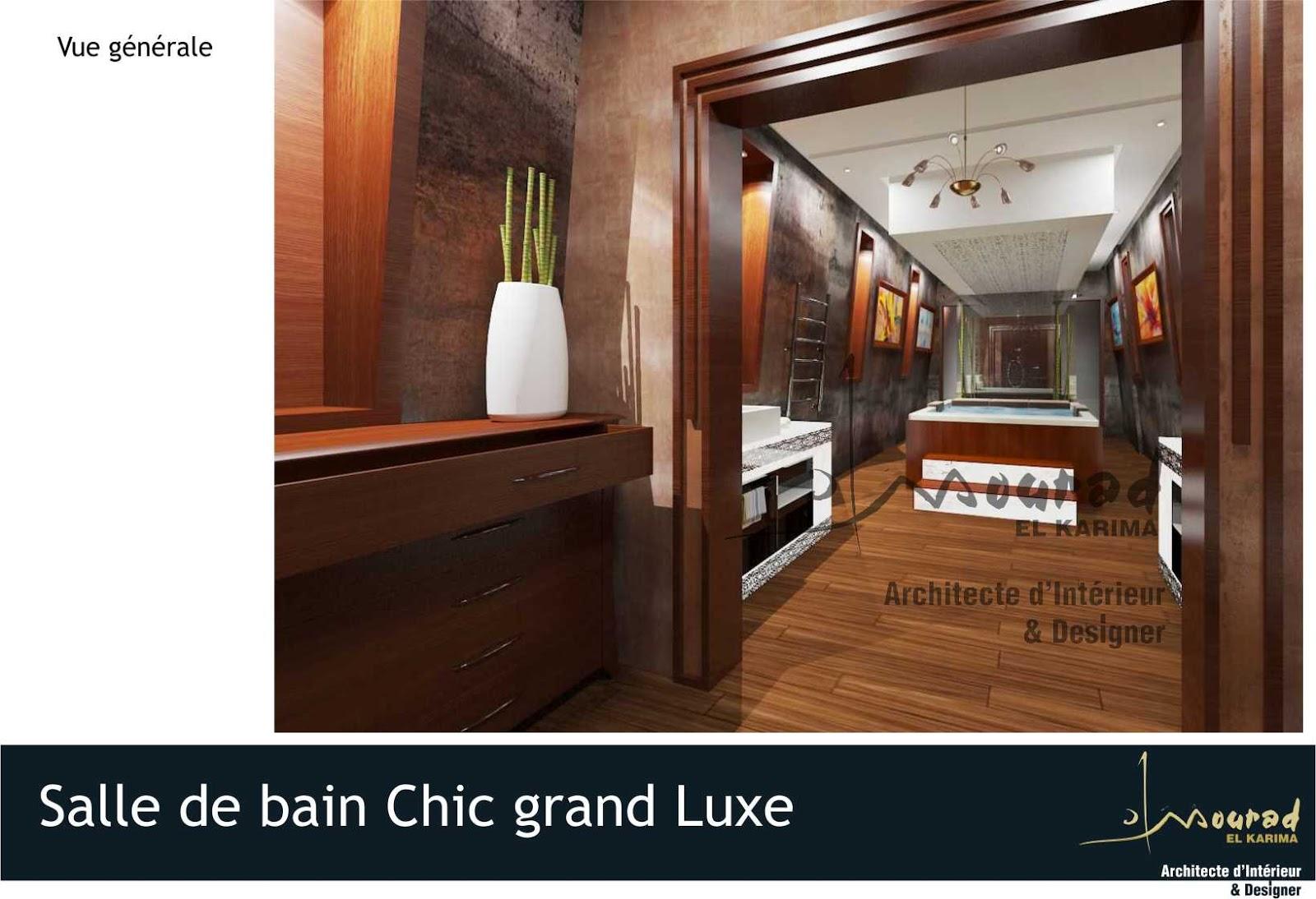 Mourad el karima architecte d 39 interieur designer for Salle de bain chic