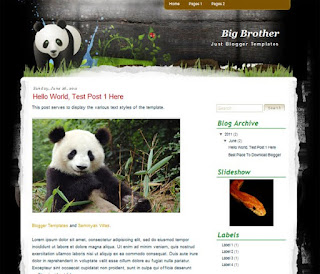 Big Brother Blogger Template