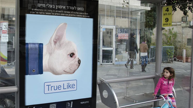 JCDecaux Animal Adoption