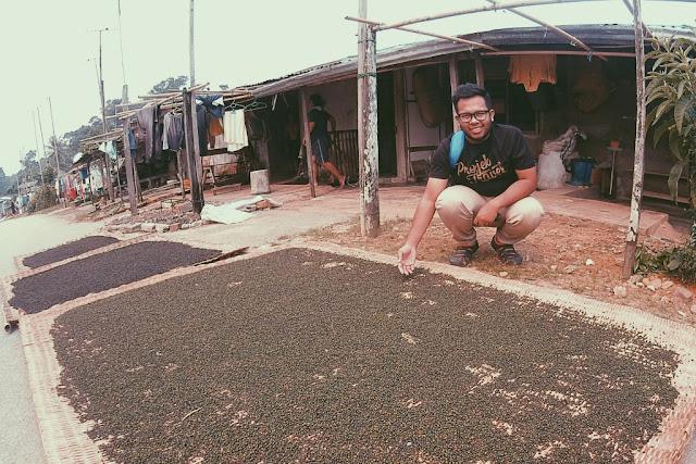 Perusahaan lada hitam di Kampung Mongkos