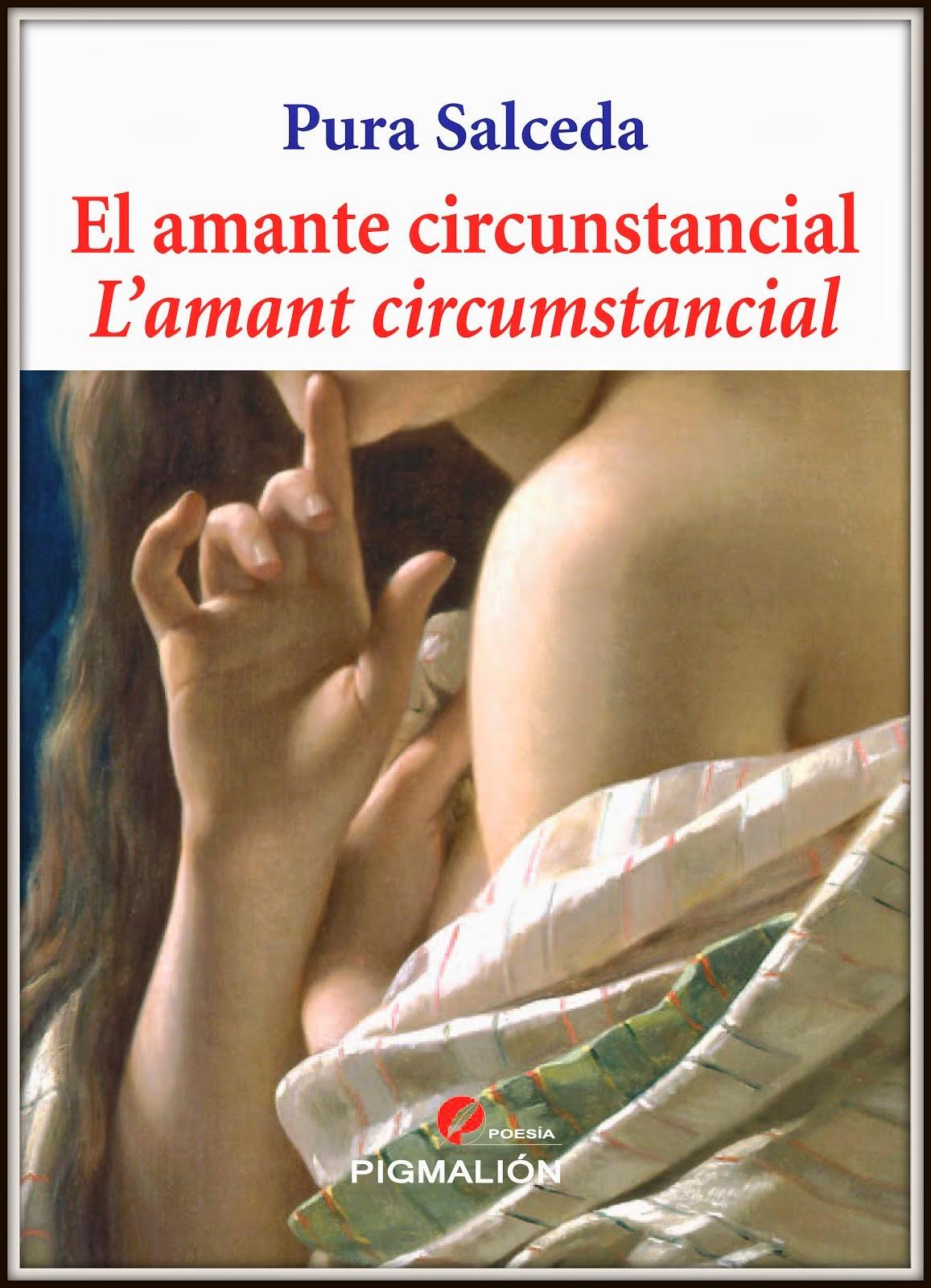 L'amant circumstancial (2014)
