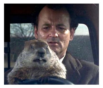 groundhog-day-movie-bill-murray-driving.jpg