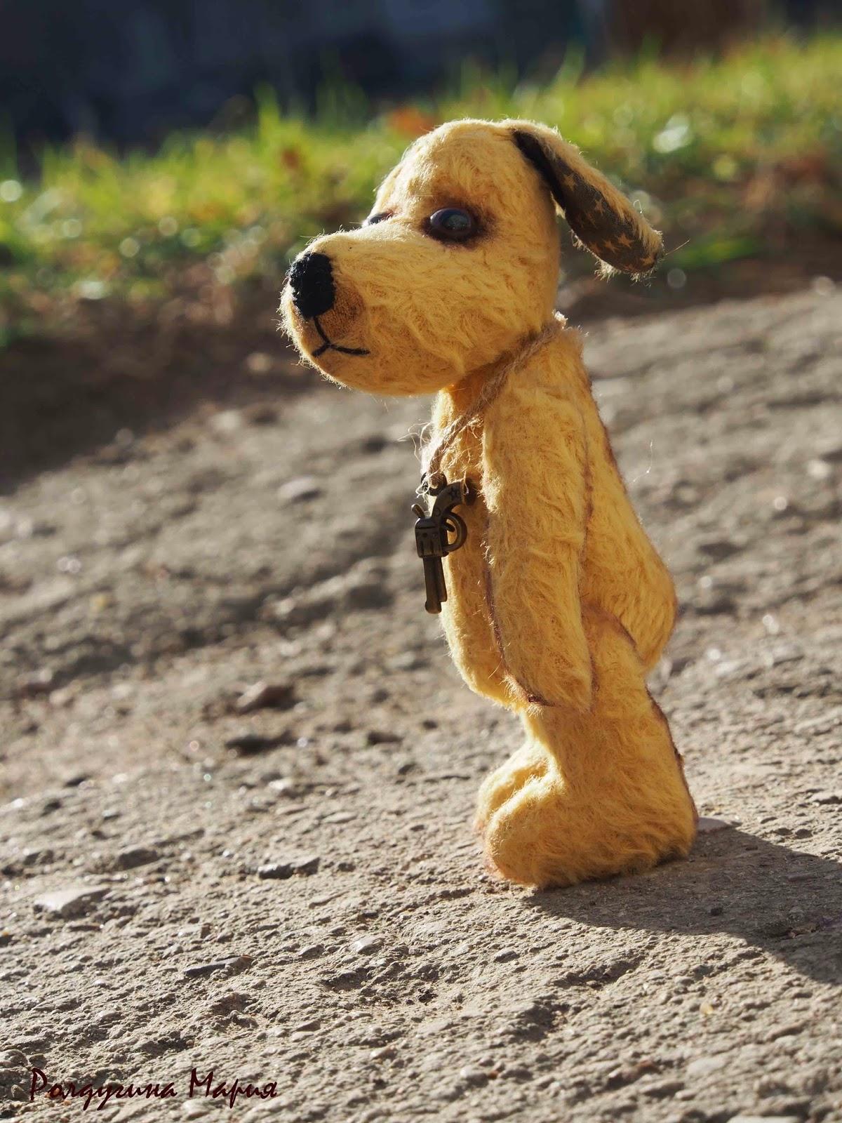 тедди пес игрушка
