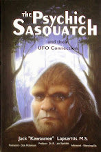 Researcher claims 'Sasquatch' are advanced human-type beings with UFO connections