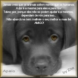 DIGA NAO AO MAL TRATO DE ANIMAIS