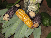 Corn by Jesus' cross