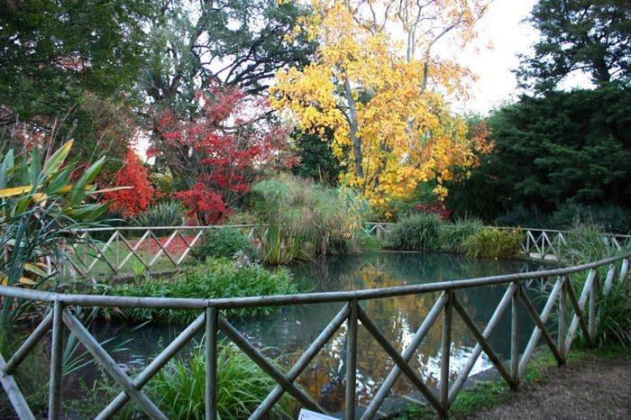 L'Orto Botanico di Roma, visita guidata naturalistica