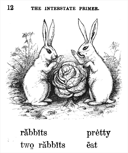 rabbits pretty, two rabbits eat
