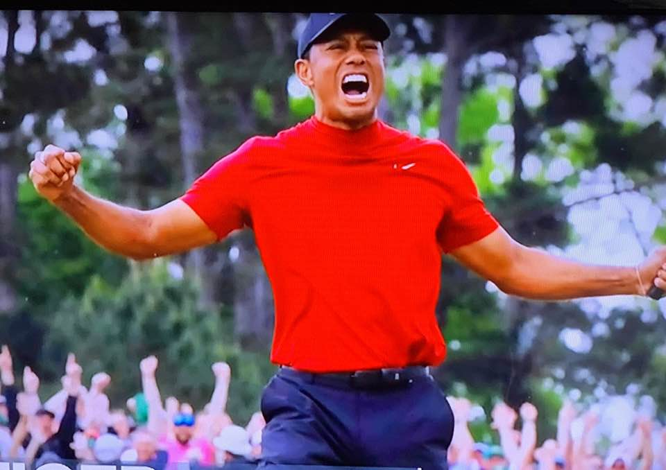 TIGER: HE IS BACK!
