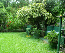 Sri Lanka Home Garden Design