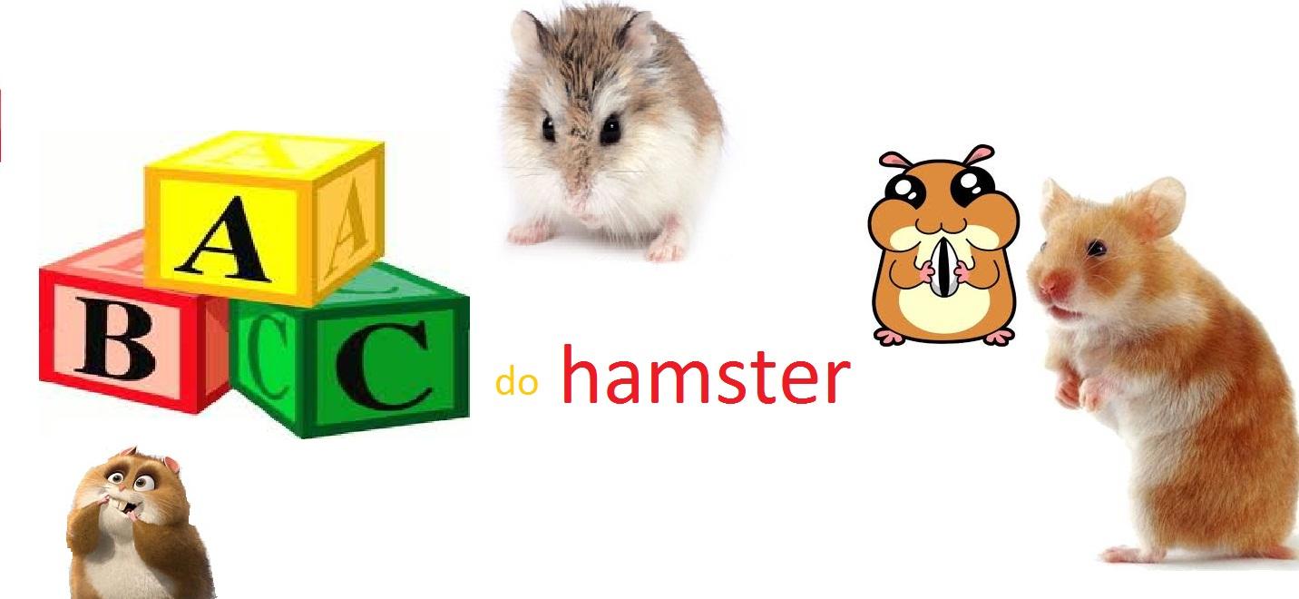 hamsterworld
