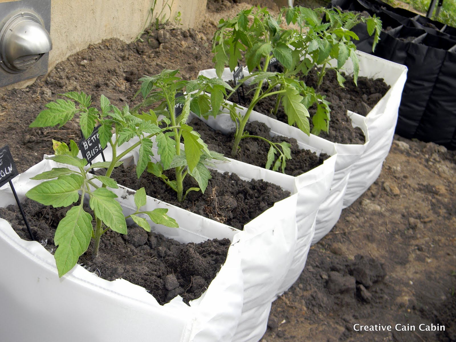 Vegetable Garden in a Bag Creative Cain Cabin