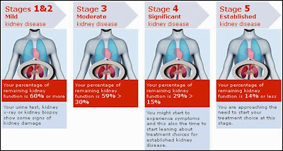 The 5 Stages of Kidney Disease