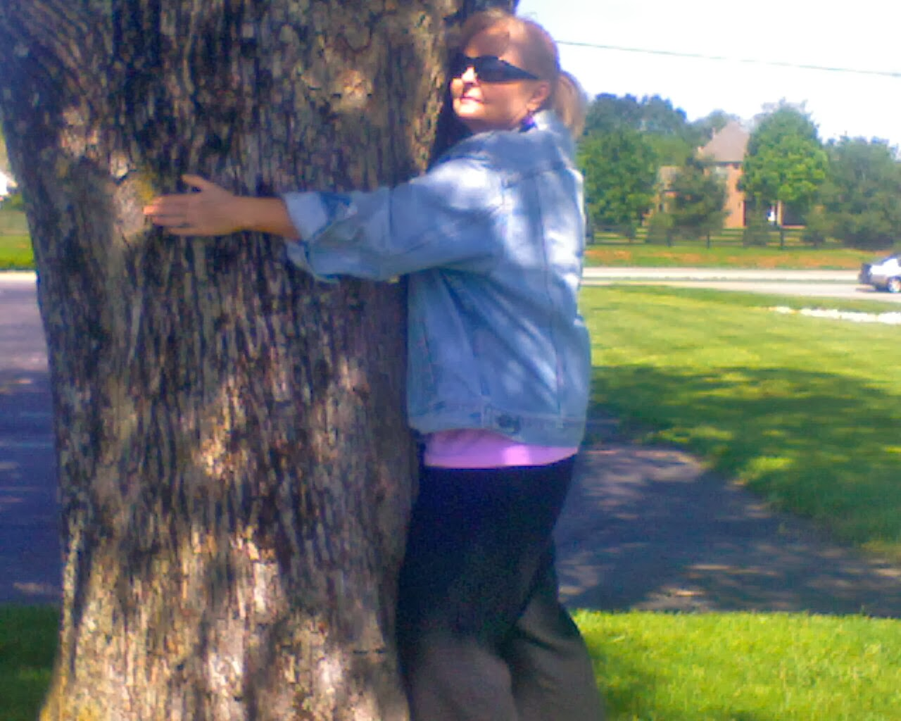 I love to hug trees.