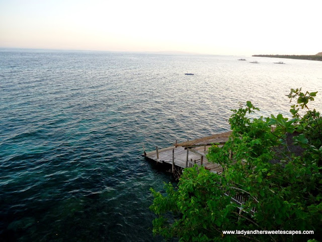 sea at Bohol Bee Farm