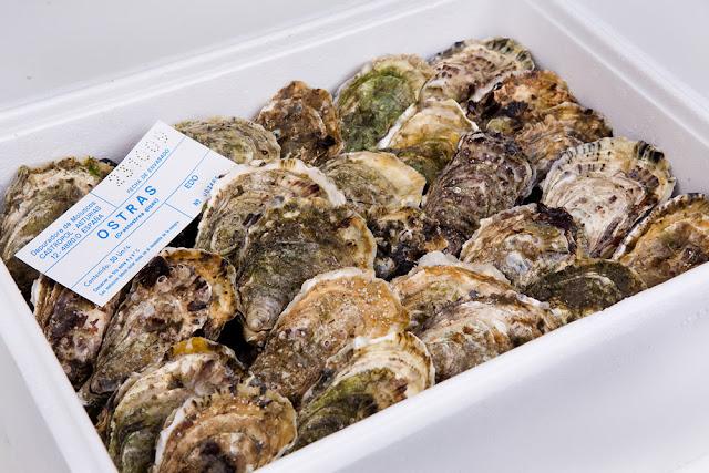 caja de ostras del Eo · acuEo recién envasada
