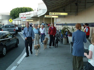 Puppy raisers and their pups at the airport
