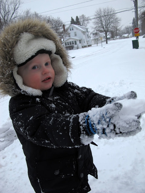 Porter's Snowball