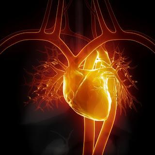 Τροφές που βοηθούν την καρδιά