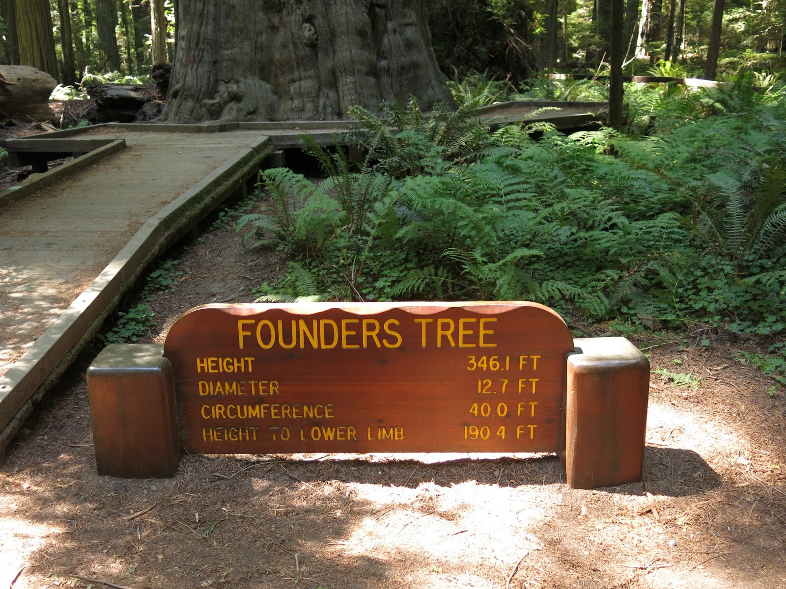 Rounders Tree Sign
