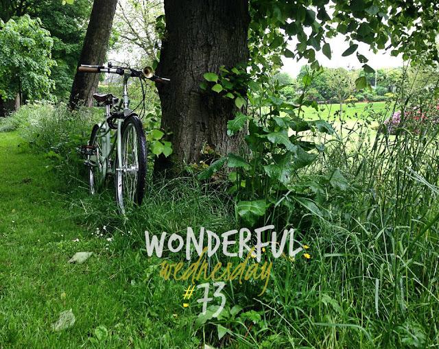 Wonderful Wednesday #73