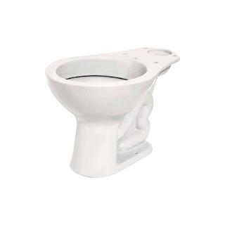 Como tirar mau cheiro do vaso sanitário