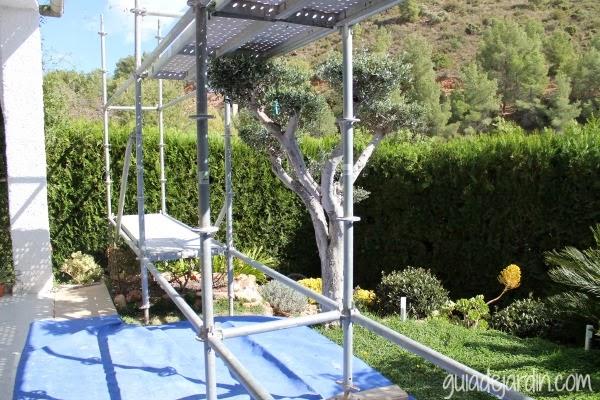 Andamio sobre el jardín