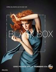 Black Box 1ª Temporada Torrent