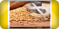 valor da soja