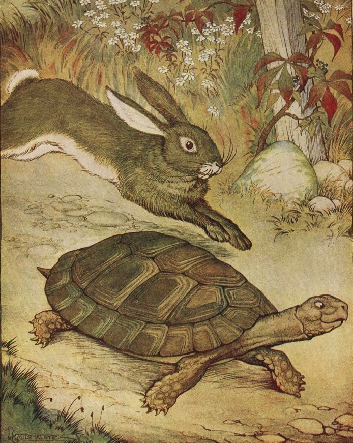 Eng368 Arcadia Annotations Blog Tortoise Harerabbit Grouse