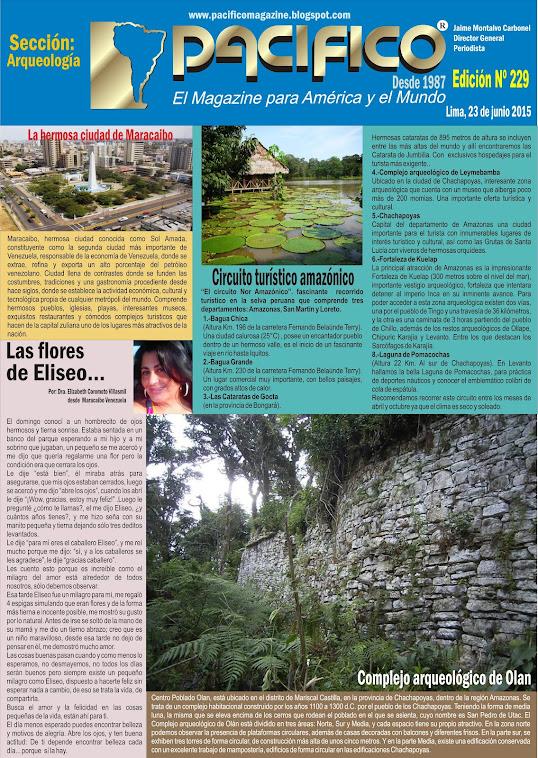 Revista Pacífico Nº 229 Arqueología