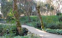 Blog Go Tandem - Parque del Capricho