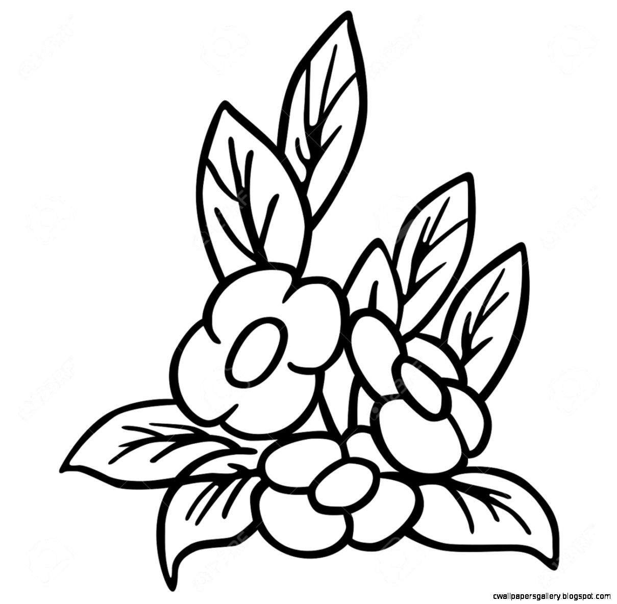 Flower   Black And White Cartoon Illustration Royalty Free