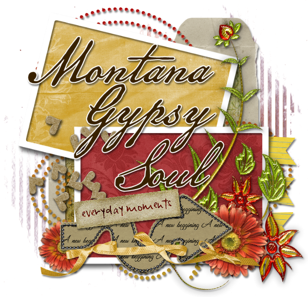 Montana Gypsy Soul