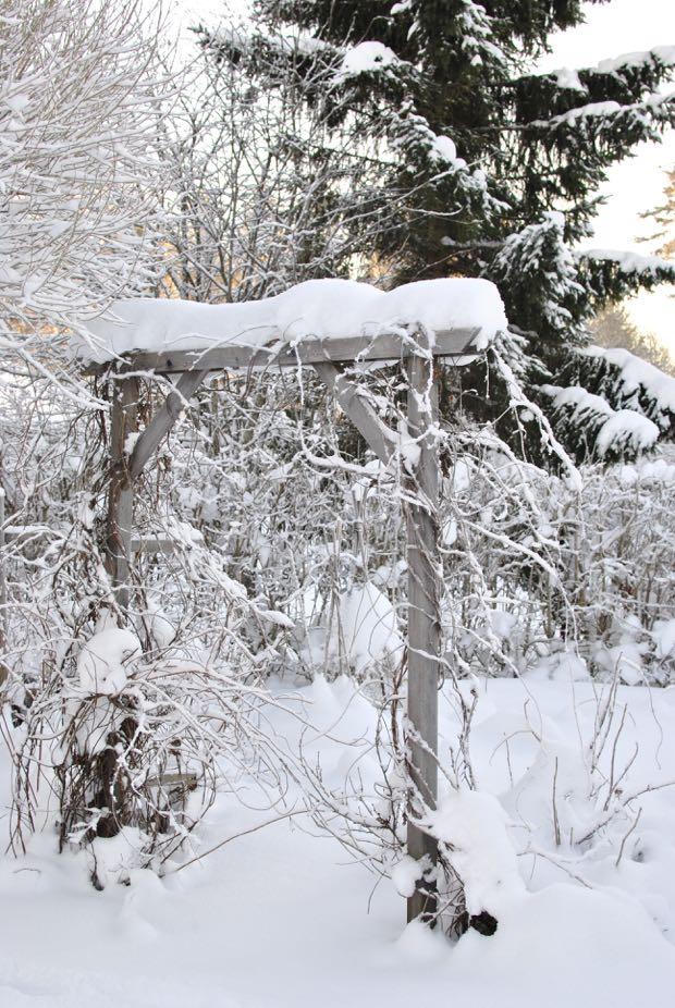hannashantverk.blogspot.se vinter trädgård snö
