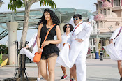 Veediki Dookudekkuva Movie Photos-thumbnail-11