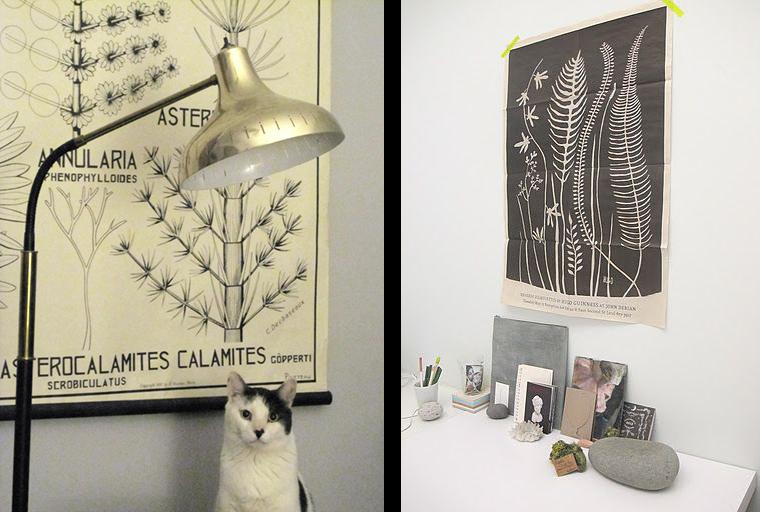 La fabrique d co les planches botaniques vintage tendance d co - Photos noir et blanc vintage ...