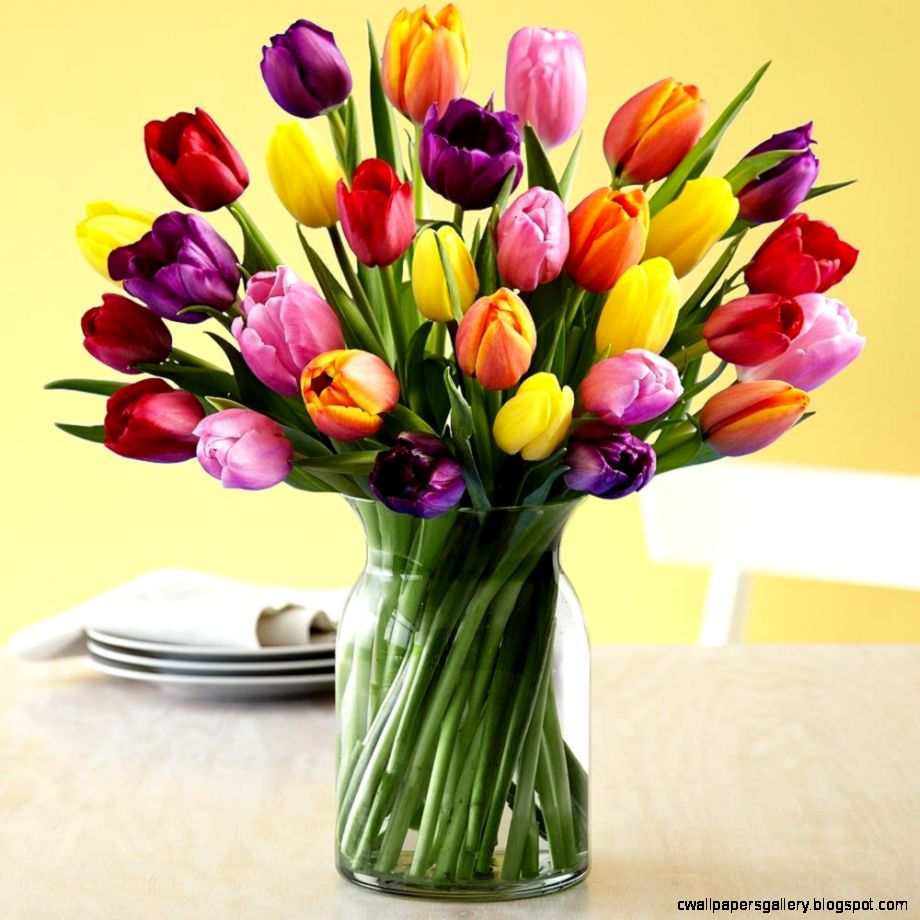 Fresh Tulip Bouquets Tulips Fresh Cut Flowers Grocery Gourmet Food