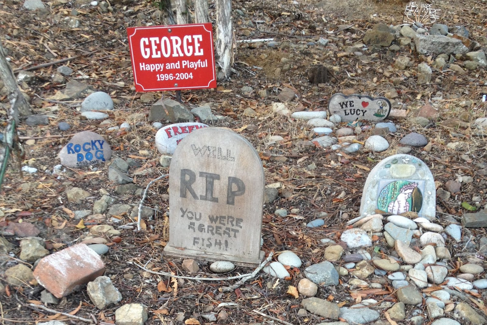 Santa Catalina Island, California, pet cemetery