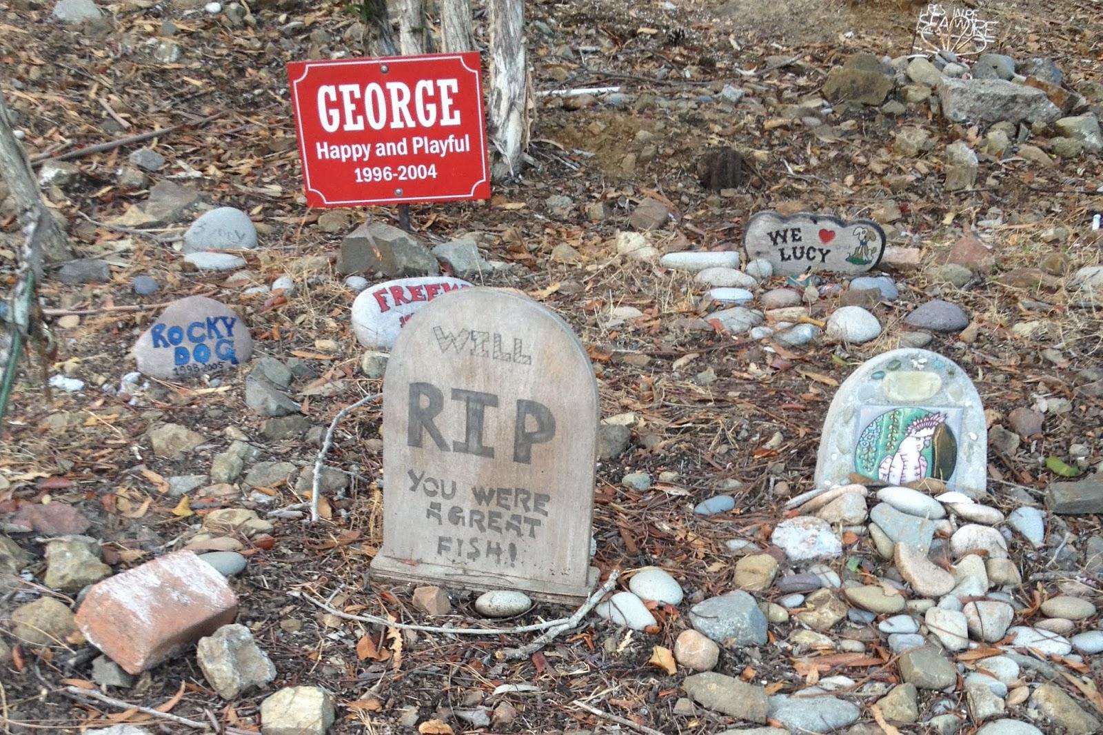 Santa Catalina Island, California, pet cemetery