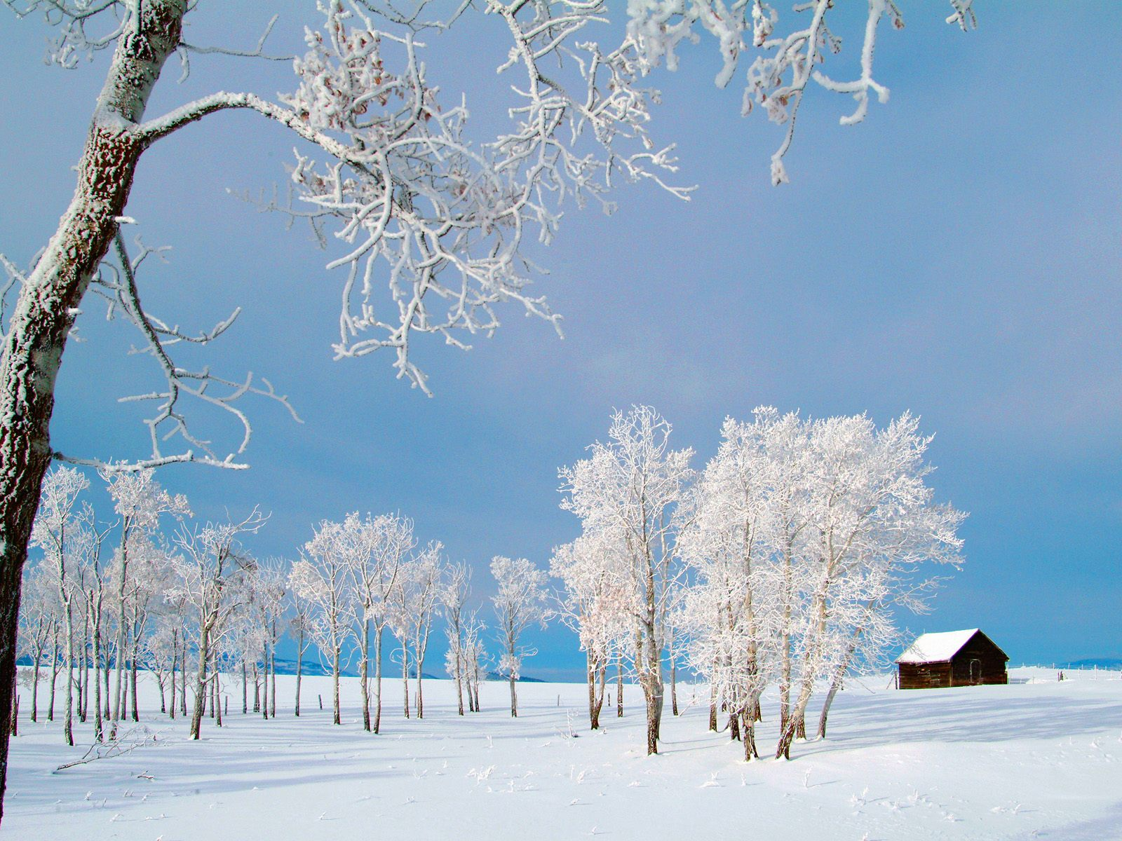 Winter Wallpapers 3d