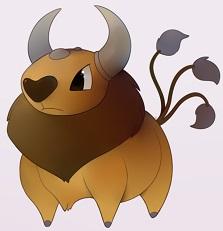 I like Bull Market