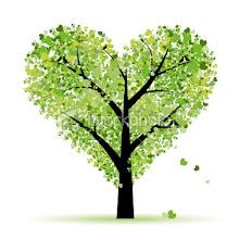 """""""Sepohon pokok"""""""