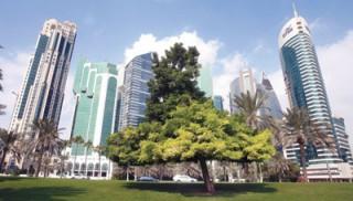«النقد الدولي»: على دول الخليج خفض نمو الإنفاق الحكومي